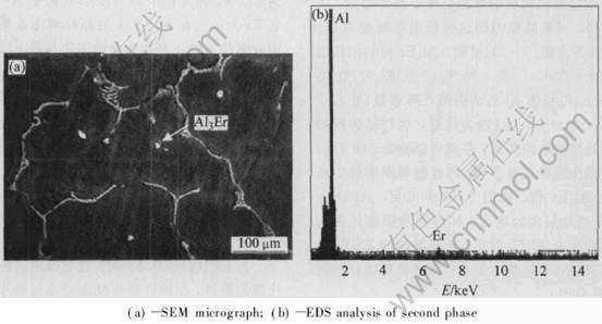 图4 Al-Mg-0.4Er合金铸态SEM形貌及第二相能谱分析-微量稀土Er对Al